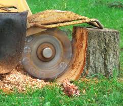 stump grinding for website